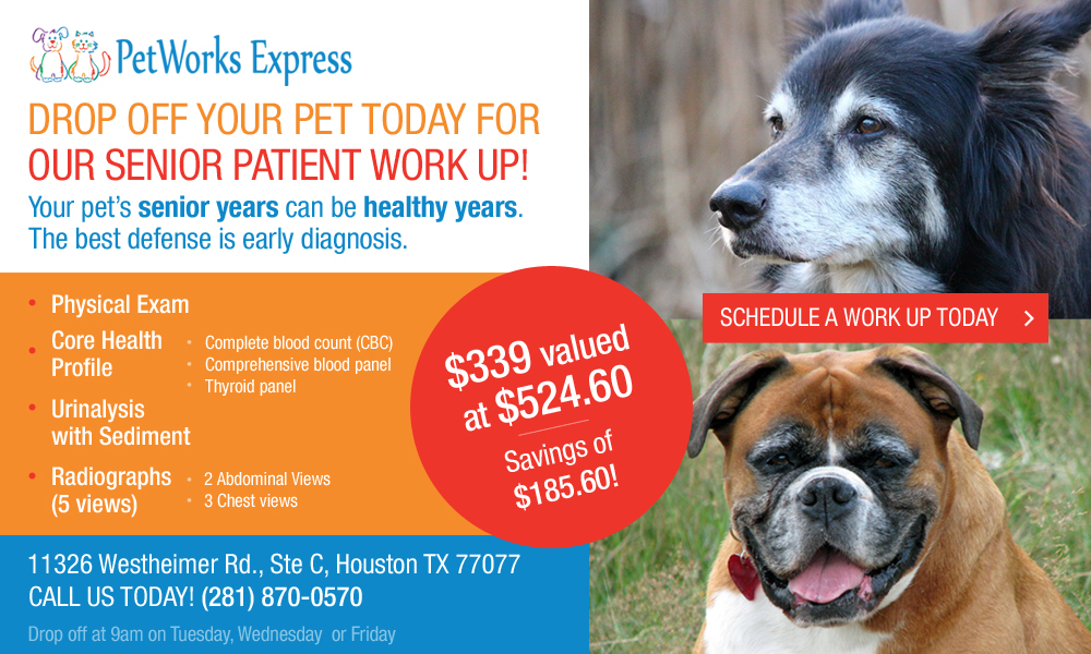 petworks_express_drop_off_your_pet